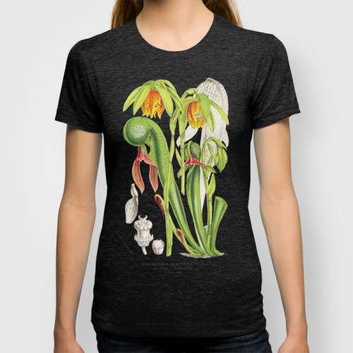 Botanical cobra plant tee shirt by The Carnivore Girl