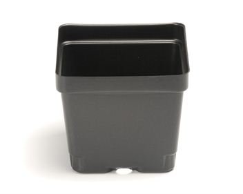 Square pots for seedlings and small plants