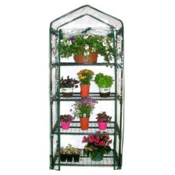 A mini greenhouse is great for keeping plants protected during the winter