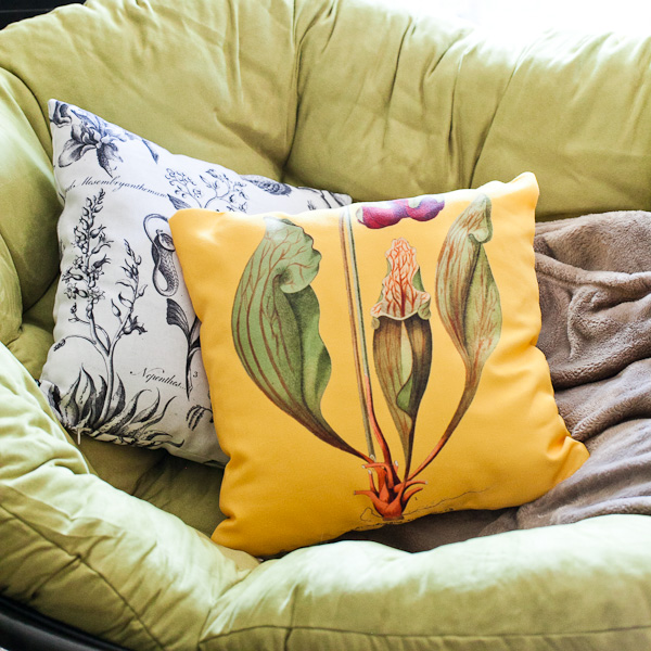 Carnivorous plant botanical prints on throw pillows