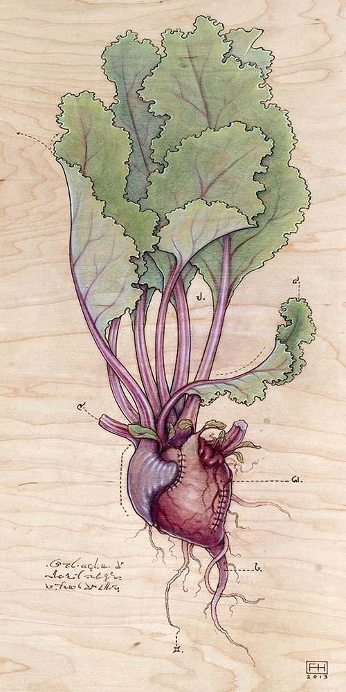 "Heart Transplants by Fay Helfer.""Heart Beet"""