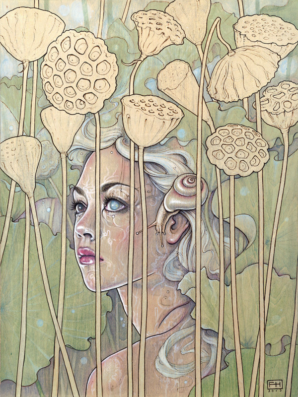 "Plant Nymphs by Fay Helfer. ""Nelumbo (Lotus)"""