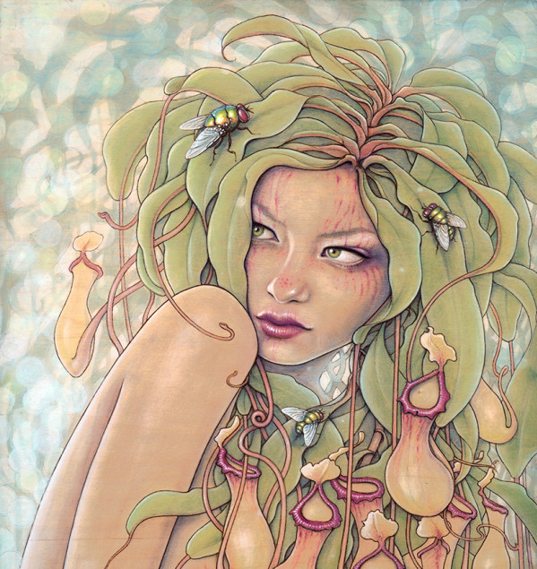 "Plant Nymphs by Fay Helfer.""Nepenthes (Pitcher Plant)"""