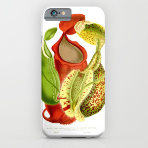 Nepenthes pitcher plant botanical art on cell phone case.