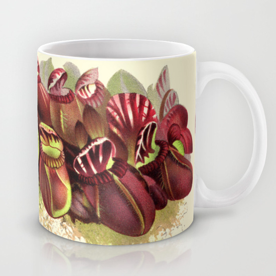 Cephalotus follicularis mug by The Carnivore Girl