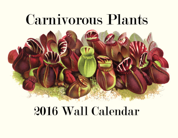 Carnivorous plant 2016 calendar. Accepting pre-orders October 1st!