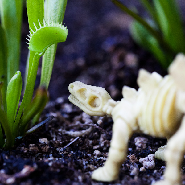 Zombie herbivorous dinosaurs in a carnivorous plant garden!
