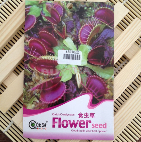 Looking To Buy Carnivorous Plant Seeds Read This Before You Get Scammed The Carnivore Girl